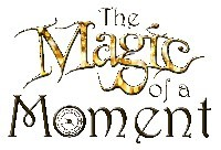 Magic of a Moment - Reflections PTA